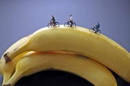 christopher-boffoli-big-appetites_banana-cyclists_collabcubed