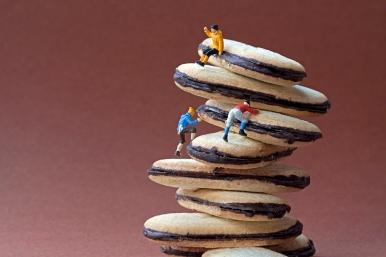 cookieclimberscopyrightedimagepleasedontrepostwithoutpermission